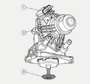 Монтиране на EGR клапан на BMW 1.5 / 1.6 / 2.0 l дизел