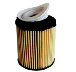 Съвети за инсталиране на вложки на масления филтър с възвратен клапан